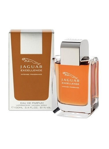 Jaguar Excellence Edp 100 Ml Renksiz